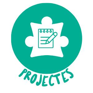 Boto projectes